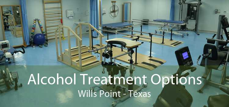 Alcohol Treatment Options Wills Point - Texas
