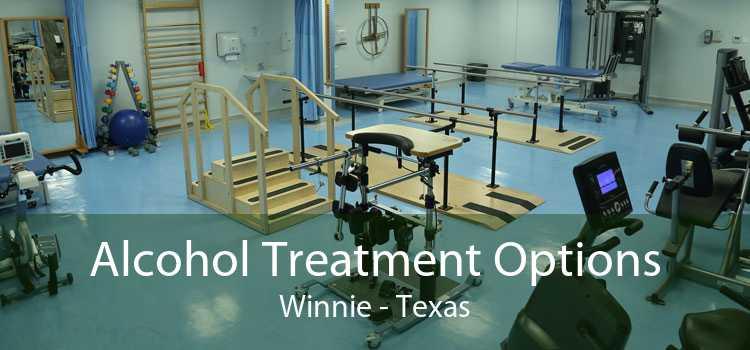Alcohol Treatment Options Winnie - Texas