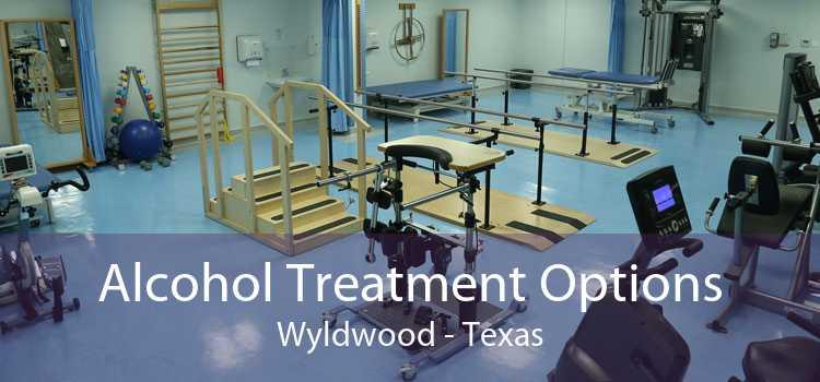 Alcohol Treatment Options Wyldwood - Texas