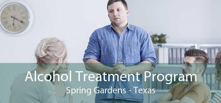 Alcohol Treatment Program Spring Gardens - Texas