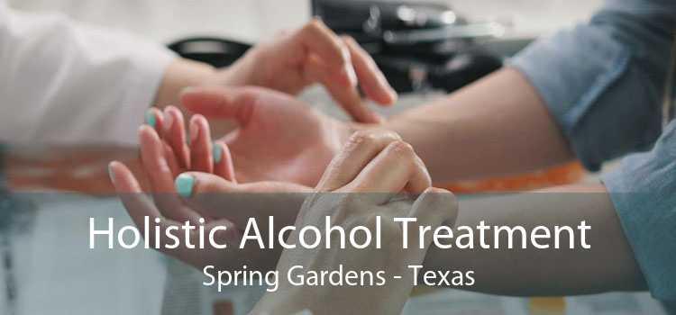 Holistic Alcohol Treatment Spring Gardens - Texas
