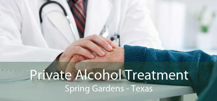 Private Alcohol Treatment Spring Gardens - Texas